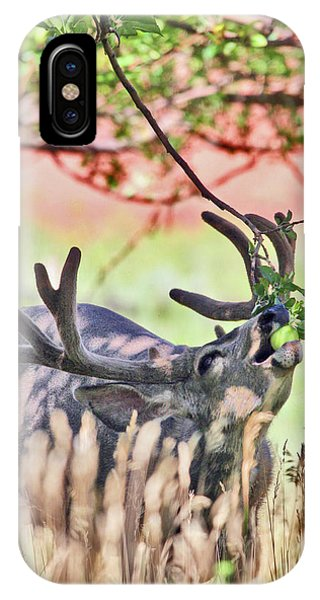 Deer In The Orchard IPhone Case