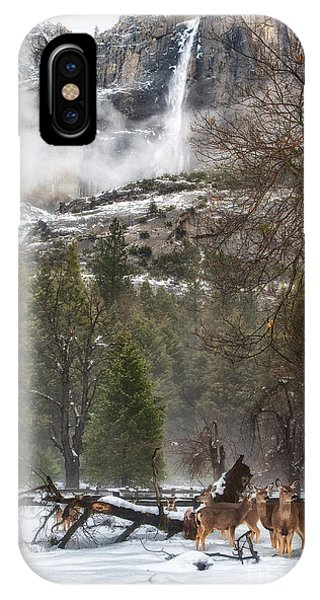 Deer Of Winter IPhone Case