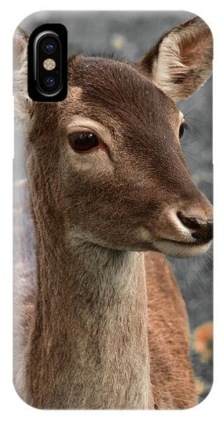 Deer Portrait IPhone Case