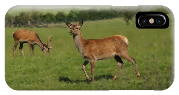 Deers On A Hill Pasture. IPhone Case