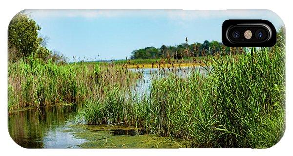 Delaware Marsh IPhone Case
