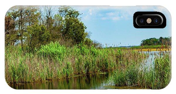 Delaware Wetlands IPhone Case