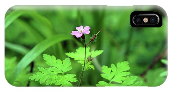 IPhone Case featuring the photograph Delicate Beauty by Ben Upham III