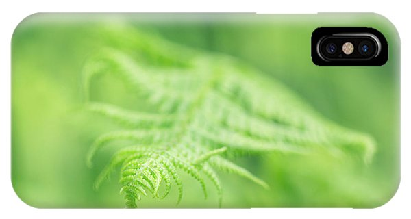 Delicate Fern - Hipster Photo Square IPhone Case