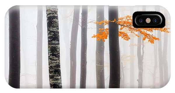 Delicate Forest IPhone Case