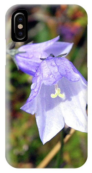 Delicate Harebell IPhone Case