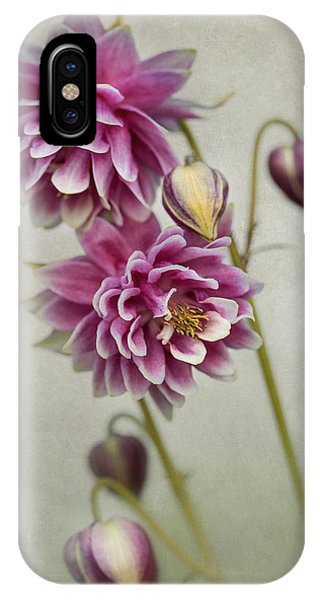 iPhone Case - Delicate Pink Columbine by Jaroslaw Blaminsky