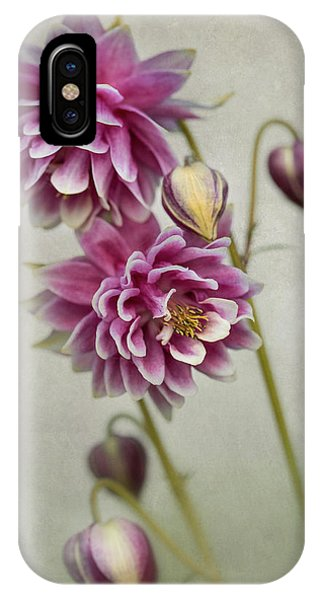 Delicate Pink Columbine IPhone Case