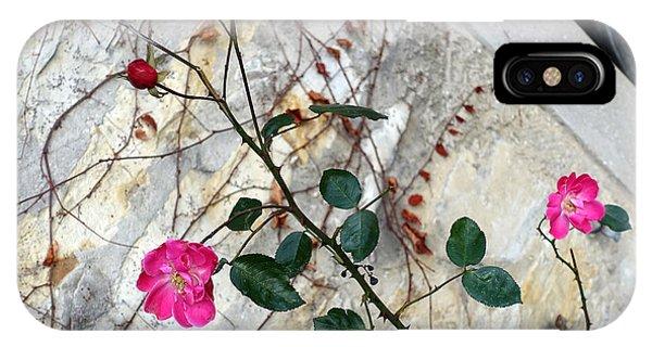 Delicate Rose In December IPhone Case