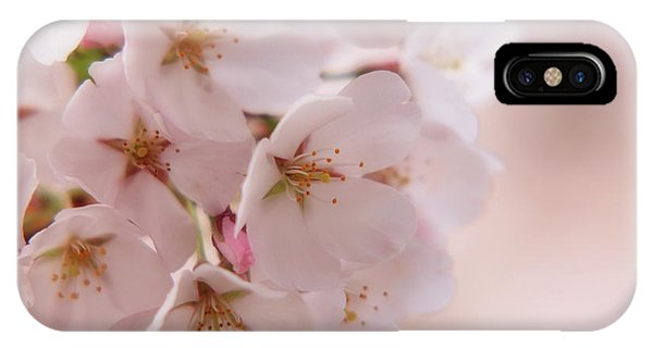 Delicate Spring Blooms IPhone Case