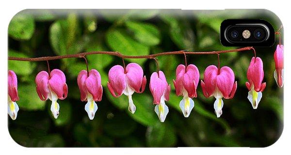 Delightful Bleeding Hearts Flowers IPhone Case