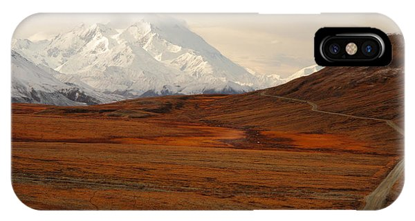 Denali And Tundra In Autumn IPhone Case