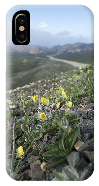 Denali Wildflowers IPhone Case