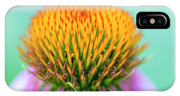 IPhone Case featuring the photograph Depth Of Field by Allin Sorenson