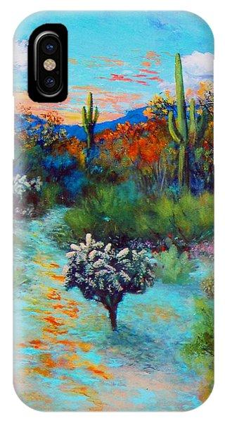 Desert At Dusk IPhone Case