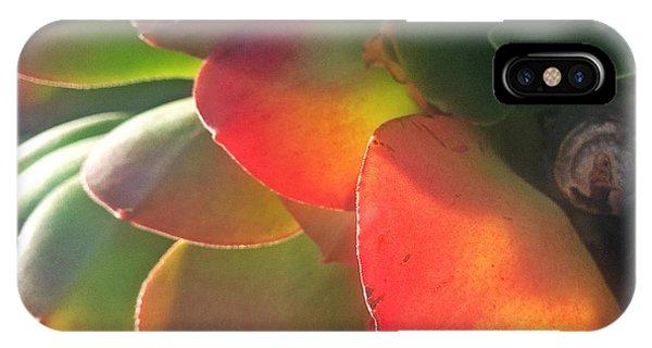 Desert Beauty IPhone Case