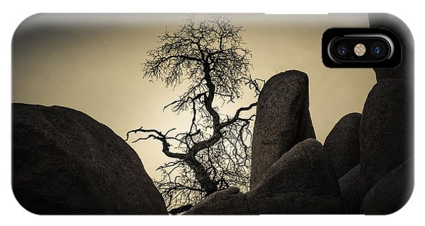 Desert Bonsai IPhone Case