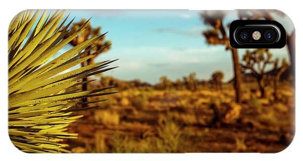 Desert Fan IPhone Case