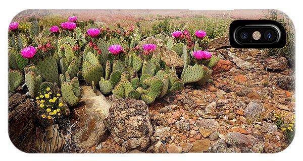 Desert Flowers IPhone Case