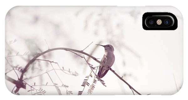 Desert Hummingbird II IPhone Case