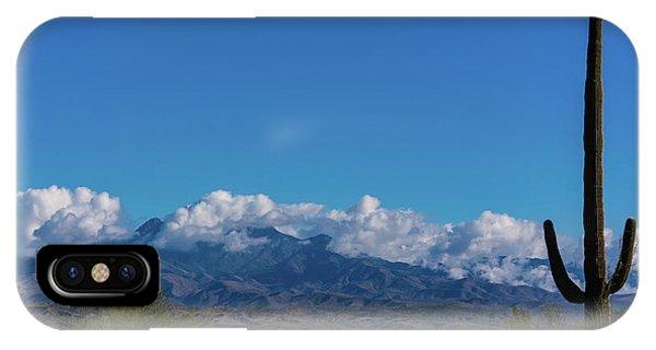Desert Inversion Cactus IPhone Case