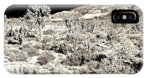 Desert Landing At Mojave National Preserve IPhone Case