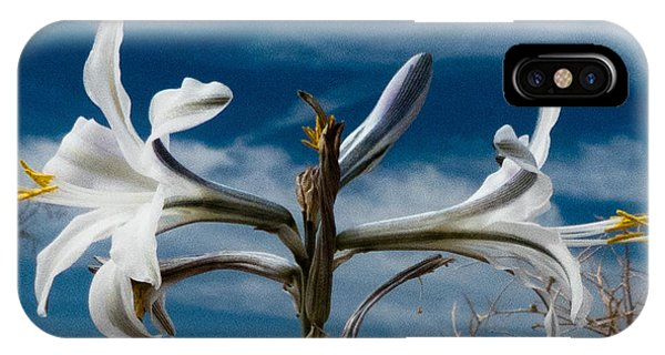 Desert Lilly Close Up IPhone Case