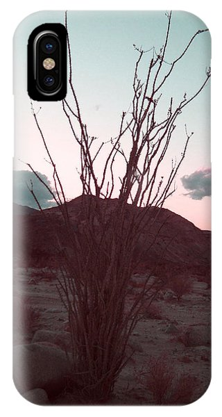 Death Valley iPhone Case - Desert Plant And Sunset by Naxart Studio