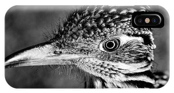 Desert Predator, Black And White IPhone Case