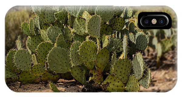 IPhone Case featuring the photograph Desert Prickly-pear No6 by Mark Myhaver
