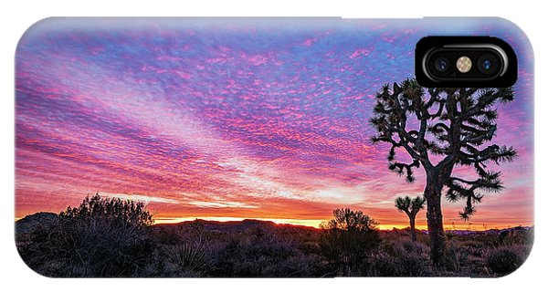 Desert Sunrise At Joshua Tree IPhone Case