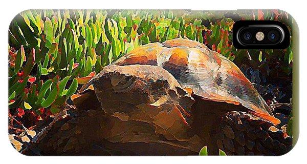 iPhone Case - Desert Tortoise by Raven Hannah