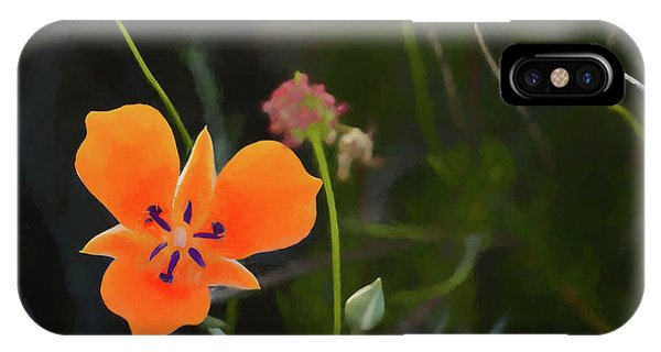 IPhone Case featuring the photograph Desert Wildflower 2 by Penny Lisowski