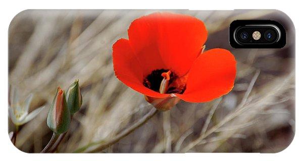 Desert Wildflower IPhone Case