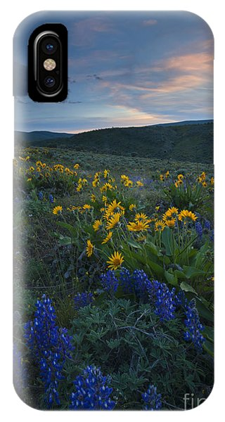 Desert Wildflower Sunset IPhone Case