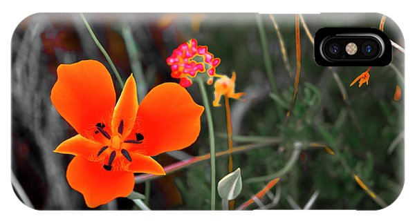 IPhone Case featuring the photograph Desert Wildflowers by Penny Lisowski