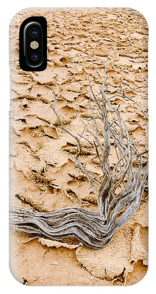 Desert Wood IPhone Case