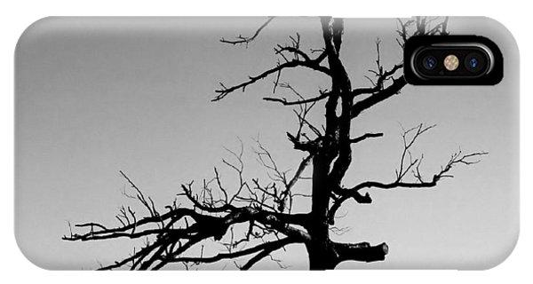 Devoid Of Life Tree IPhone Case