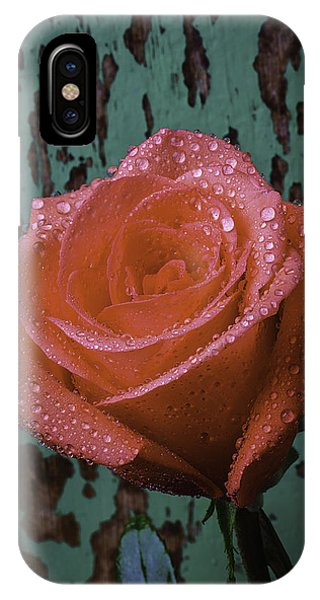 Dew Covered Rose IPhone Case