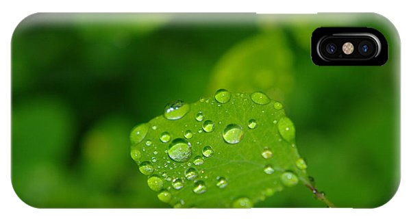 Little Things iPhone Case - Dew Dappled Leaf by Jeff Swan