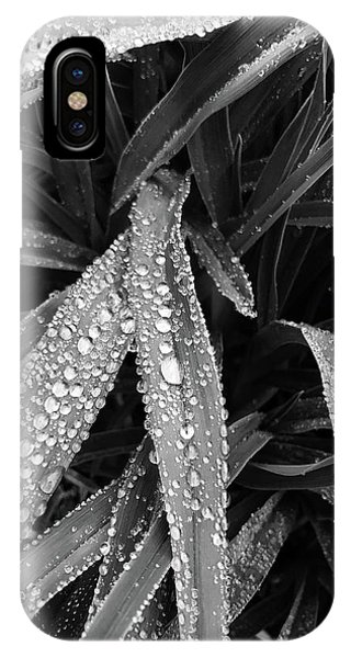 IPhone Case featuring the photograph Dew Drops Await The Sun by Lora Lee Chapman