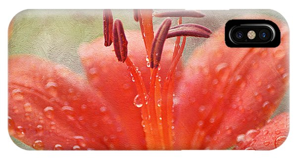 Dew Drops Shining In The Sun IPhone Case