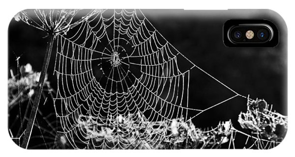 Dewy Spider's Web IPhone Case