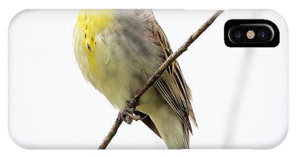 Dickcissel  IPhone Case