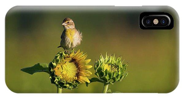 Dickcissel Sunflower IPhone Case