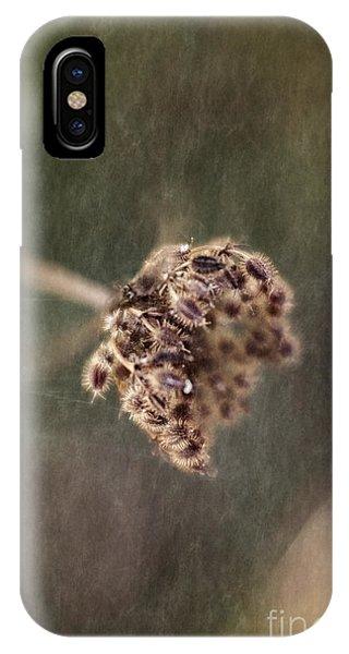 Die Reifen Samen IPhone Case