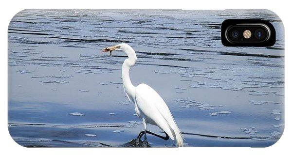 Dinnertime Pelican IPhone Case
