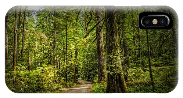 Dirt Road On Vancouver Island IPhone Case
