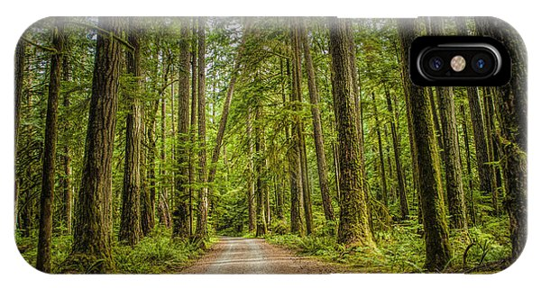 Dirt Road Through A Rain Forest On Vancouver Island IPhone Case
