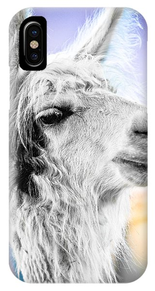 Dirtbag Llama IPhone Case